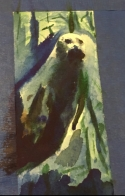 watercolor seal 2.jpg